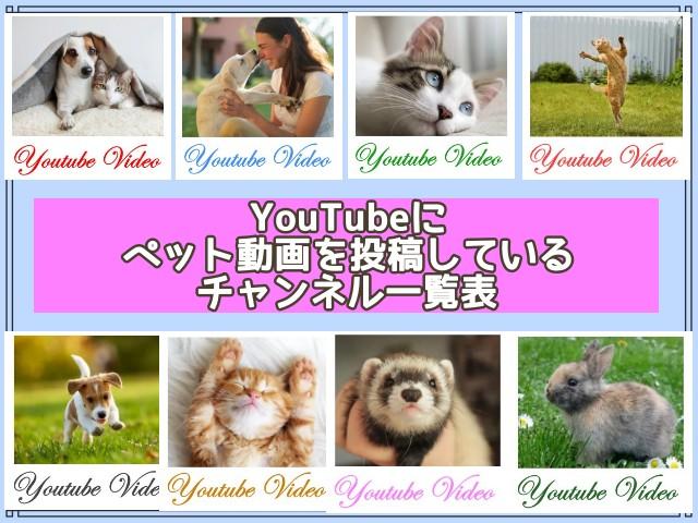 YouTubeに ペット動画を投稿しているチャンネル一覧表