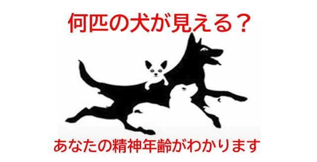 犬の画像を使用した心理テスト画像