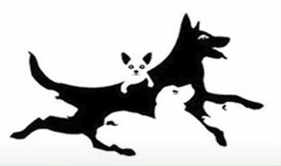 犬の心理テスト画像